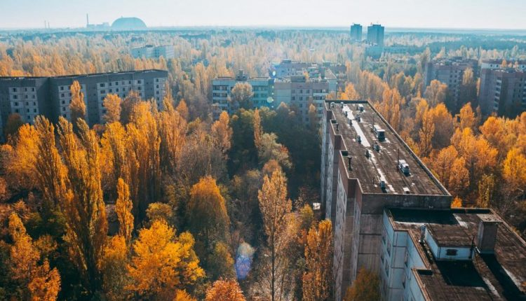 Chernobyl: Why the nuclear disaster was an environmental success | Living